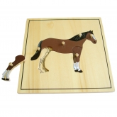 Animal Skeleton Puzzle: Horse
